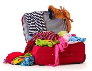 bagage-a-main-rangement