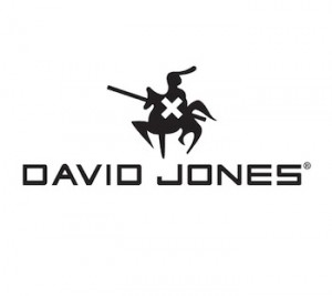 logo valise david jones
