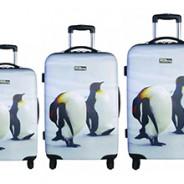 les 4 sets de valise rigide de qualité