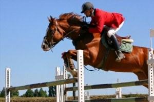 sac-de-sport-equitation