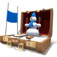 Choisir sa valise pour les vacances de Noël
