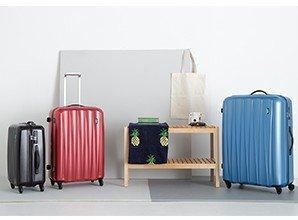 bagage-lojel-essence